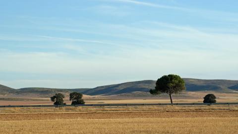 En Albacete, navajas, queso y gasóleo de calefacción.